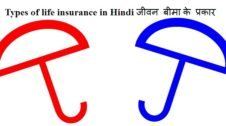 Types of life insurance in Hindi