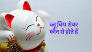 Blue Chip Shares in Hindi ब्लू चिप शेयर