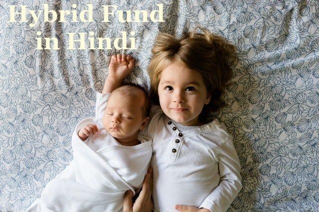 Hybrid Fund in Hindi हाइब्रिड फंड क्या हैं
