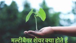 Multibagger Shares in Hindi